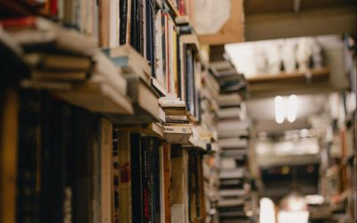 Libraries and Meeting the Enlightened Minds of the World